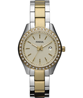 Stella Mini 30mm Bicolor Ladies Watch with Date
