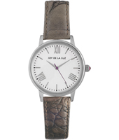Classic silver ladies quartz watch