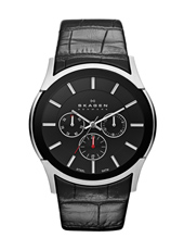Skagen SKW6000 SKW6000 - 2013 Spring Summer Collection