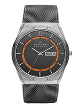 Skagen SKW6007-Titanium SKW6007 - 2013 Spring Summer Collection