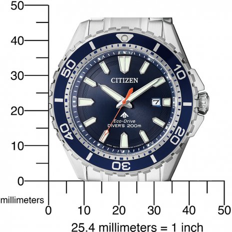 20 ATM Steel & Blue Eco-Drive Diver Watch Fall Winter Collection Citizen