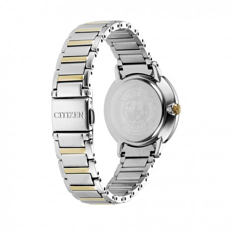 Citizen watch bicolor