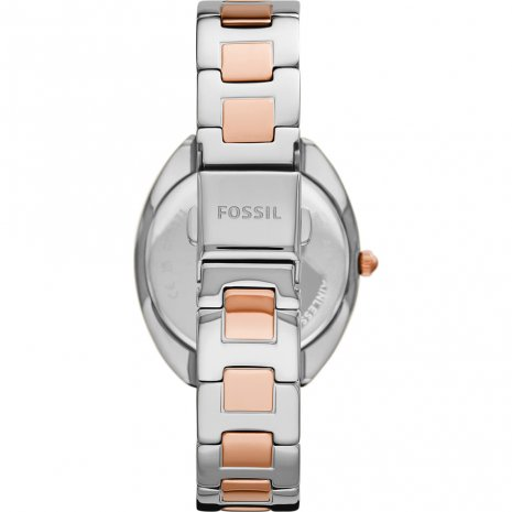 Fossil watch 2021