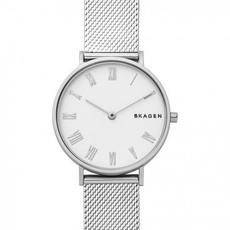 Skagen Hald watch