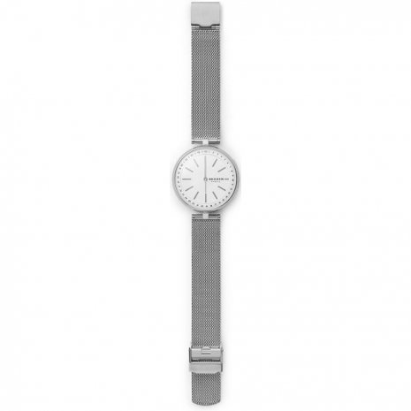 Ladies Hybrid Smart Watch Fall Winter Collection Skagen